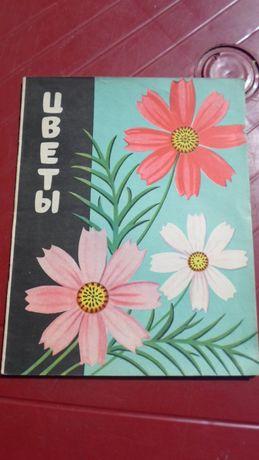 """Альбом для раскрашивания """"Цветы"""" 1965 года, чистый."""