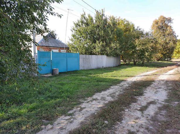 Продам дом в Просяном