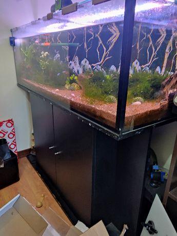 Movel + Aquario + Equipamento e vivos