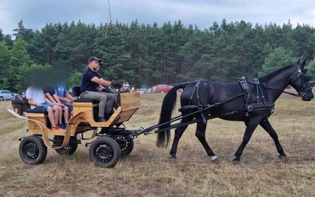 Bryczka konna na duże i średnie konie