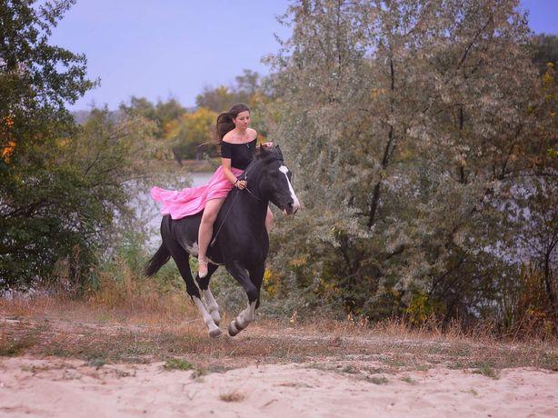 Фотоссеии. Прогулки на лошадях.Прогулки с уроком.