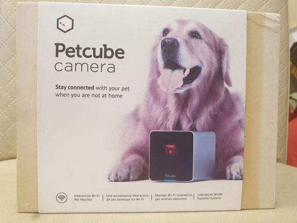 Kamera do monitoringu zwierzęcia petcube camera