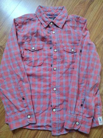 Koszula H&M 7-8 lat