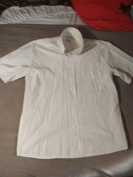Koszula Feniks