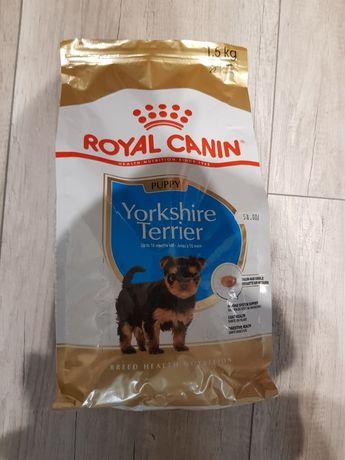 Karma Royal Canin dla Yorkow