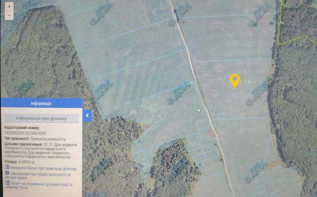 Продам земельну ділянку сільськогосподарського призначення 8,9304 га