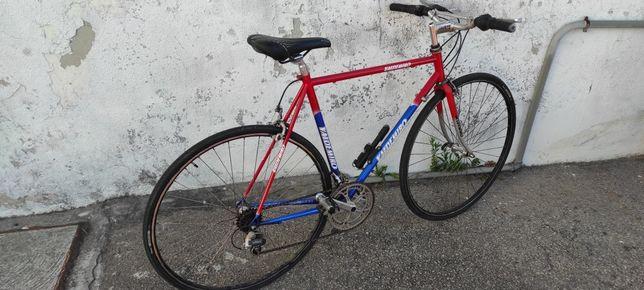 Bicicleta Valdemiro