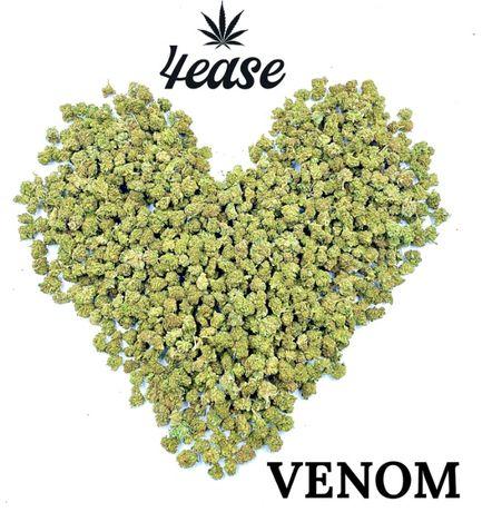 Susz CBD Venom 250g Okazyjna cena