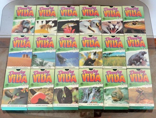 """Colecção 18 videos """"Vida Animal"""""""