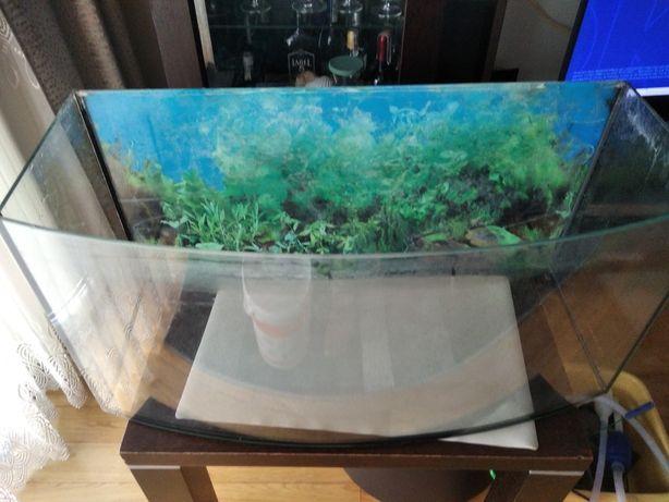 Akwarium z z filtrem