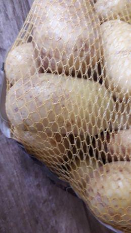 Ziemniaki jadalne z dowozem pod wskazany adres