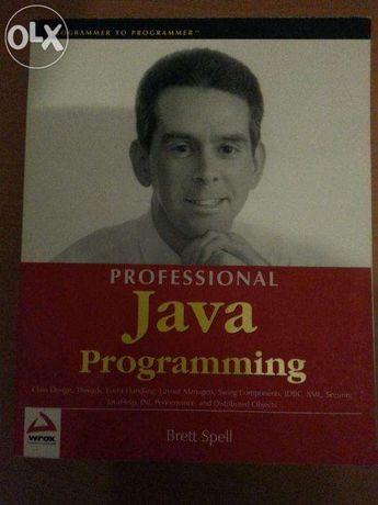 Professional JAVA Programming - Brett Spell