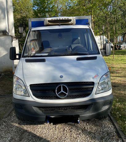 Mercedes-Benz Sprinter 313CDI Zabud. Chłodnia/Mroźnia lub sam widelec