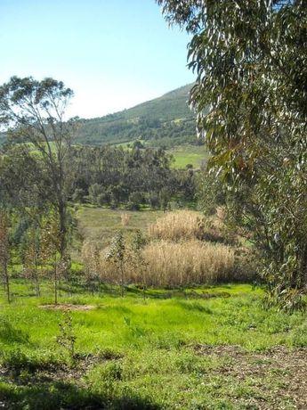 Terreno Rustico zona Abrigada - Montejunto / agricultural land