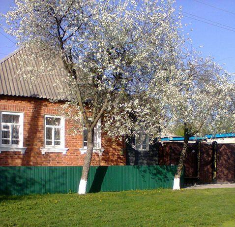 Продам дом в г.Белополье