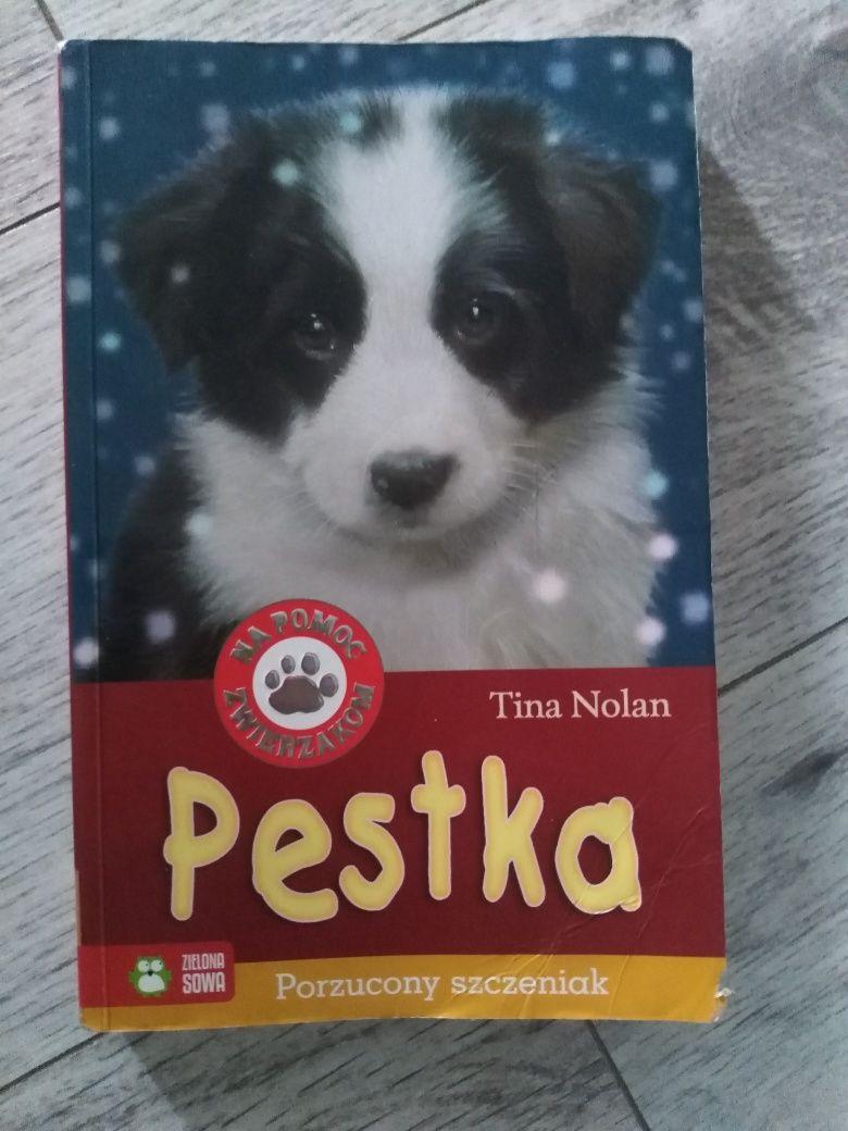Książka Pestka - porzucony szczeniak
