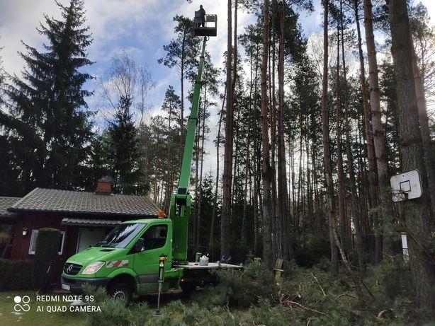 Wycinka drzew Otwock i okolice, czyszczenie działek, rębak do gałęzi