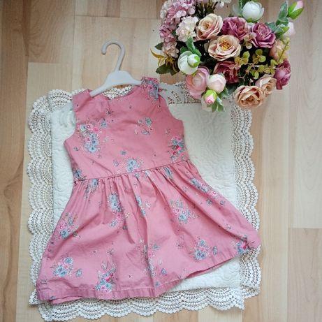 Sukienka Next 86