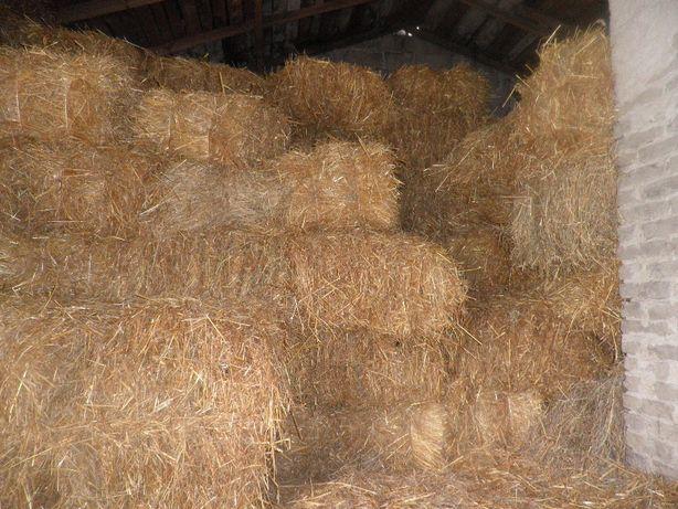 sprzedam słomę suchą ze stodoły