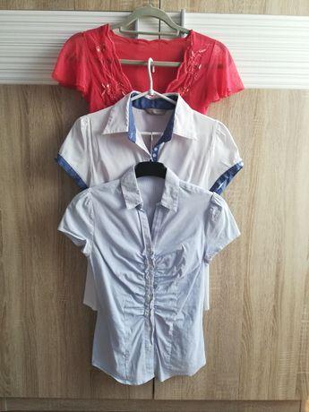Bluzeczki, rozmiar S-36.cena za całość 15 zl