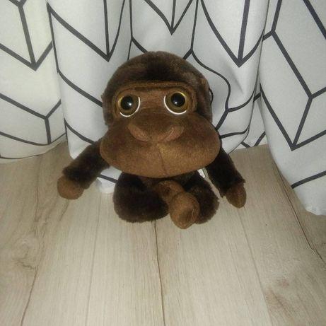 Słodki pluszak małpa, bardzo miły w dotyku -NOWY