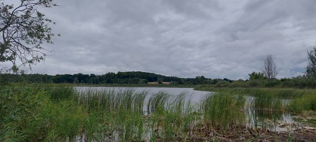Działki rekreacyjne nad jeziorem
