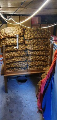 """Ziemniaki ekologiczne """"Cekin"""""""