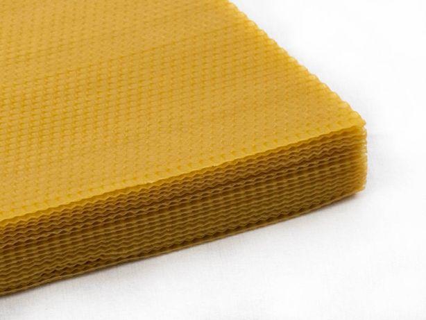 Węza pszczela wielkopolska sterylizowana - bez wymiany na wosk