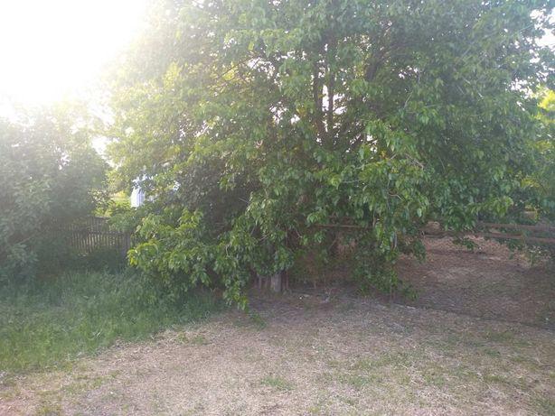 Продам земельный участок в Каланчаке