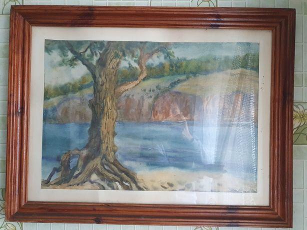 Картина під склом Олександра Байдукова