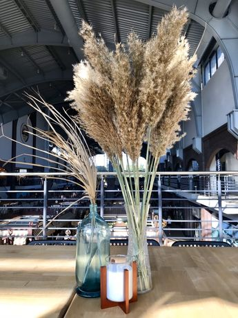 Пампасная трава пушистая Сухоцвет Камыш Декор Свадебный букет Ваза