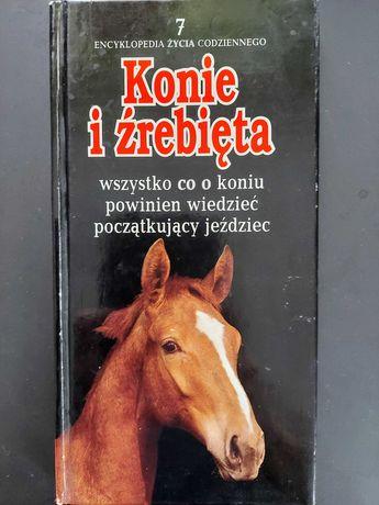 Konie i źrebięta. Encyklopedia życia codziennego (seria)