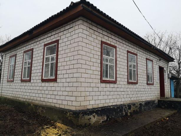 Продам будинок в с.Березняки