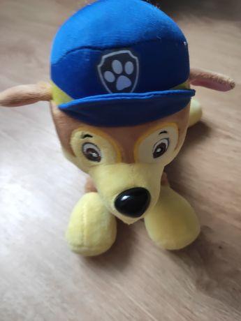 Psi patrol maskotka Chase