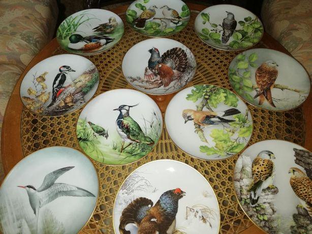Talerze z ptakami. Porcelana. Limoges. 11 ptaków
