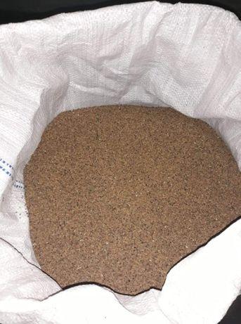 Oczyszczone nasiona Facelii błękitnej