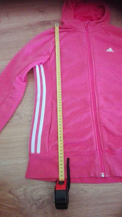 Bluza addidas rozmiar 164 Rzeszów - image 1