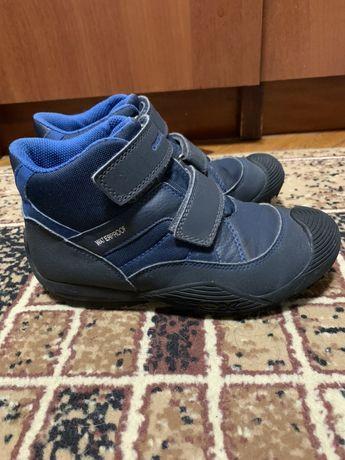 Ботинки зимние Geox Amphibiox