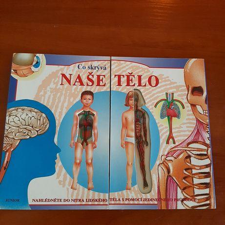 Книга о теле человека