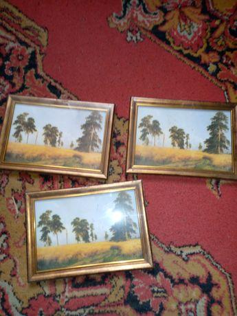Картины маленькие 3 шт лес,природа