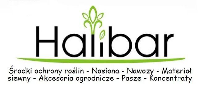 Halibar - Sadzeniak kwalifikat sadzeniaki vineta