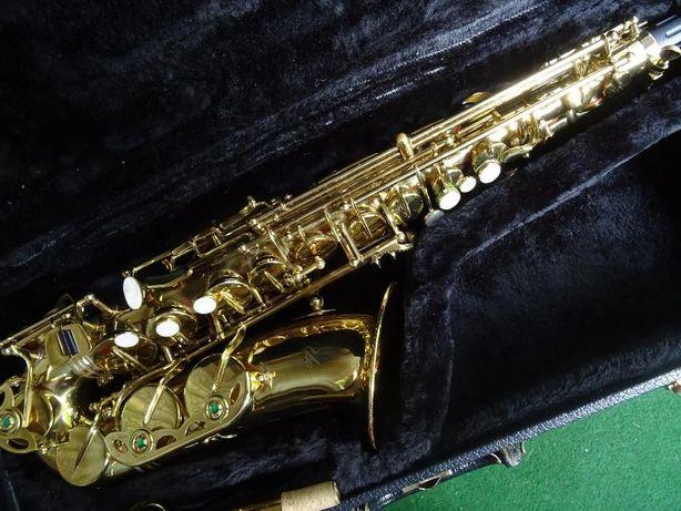 Saxofone York com estoijo
