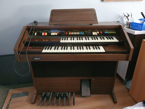 Organy elektryczne GEM Wizard 331