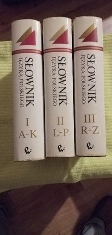 Słownik Języka Polskiego trzy tomy