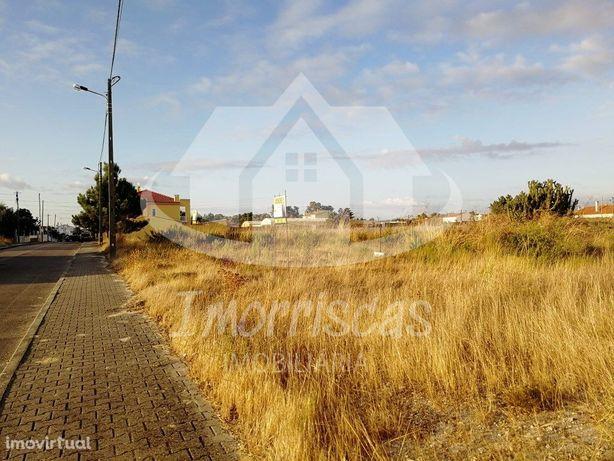 OPORTUNIDADE - lote de 2 terrenos em Pinhal de Frades