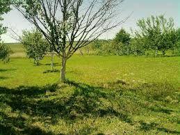 Продається земельна ділянка (вул. Лесі Українки)