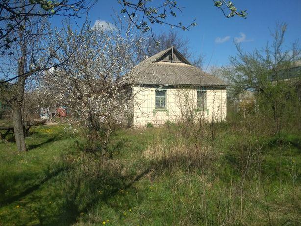 Продам будинок в селі Скригалівка