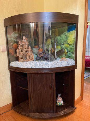 Акваріум / аквариум