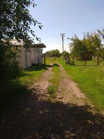 Продам участок в Хмелевике Барышевского района