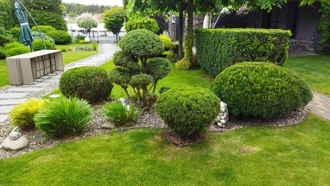 Садовник ландшафтный дизайн стрижка кустов садівник догляд за ділянкою